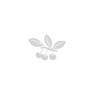 Le Tablier brodé Griottines